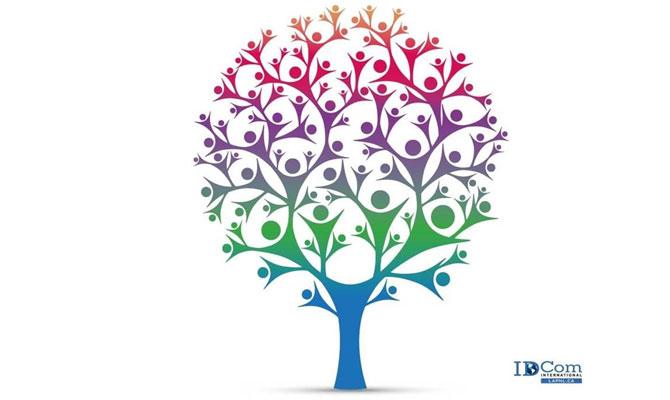 Constellations familiales et systémiques en coaching